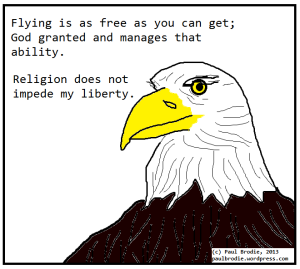 Bald eagle: freedom is like flying which ability is granted by God